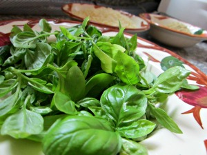 basil for pesto